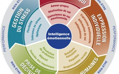 HUMANIS STEP certifié aux outils EQ-I